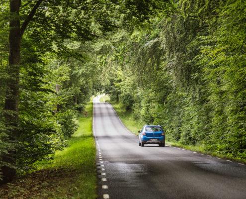 Vägen mellan Barum och Vånga, fotograf PerMagnus Persson