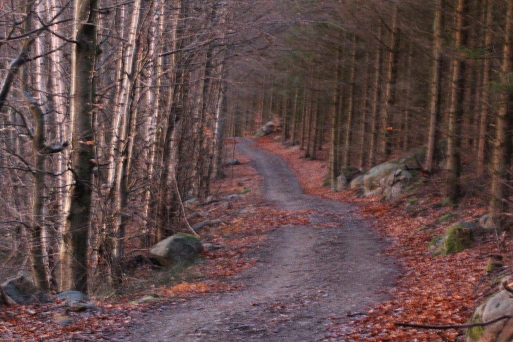 Bergvägen, fotograf Päivi Slotteborn