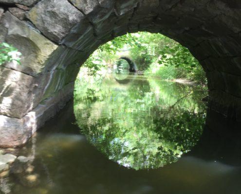 Kanalen mellan Oppmanna- och Ivösjön - Fotograf Ann-Lis Pilbäck